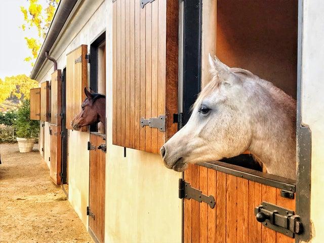 HB Barn Outside (14)