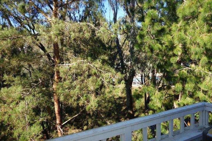Deck Views towards Pool