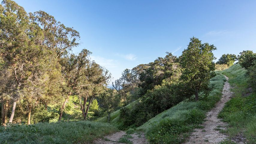 walk to 50 acre Honda Park