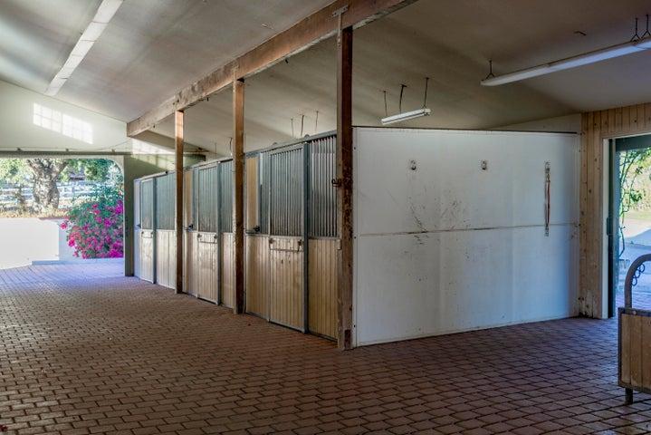 Barn with eight stalls and paddocks