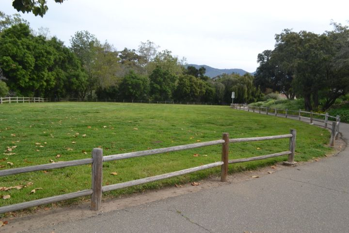 Tabano Hollow Park and bikepath