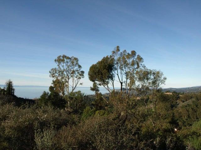 Harbor Island and Mountain Views