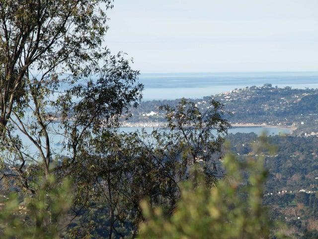 Harbor and City Views
