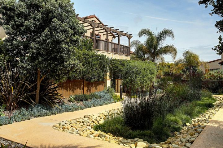 Mature landscaping in courtyard