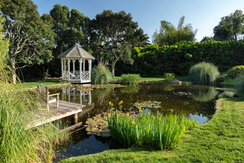Bucolic Pond