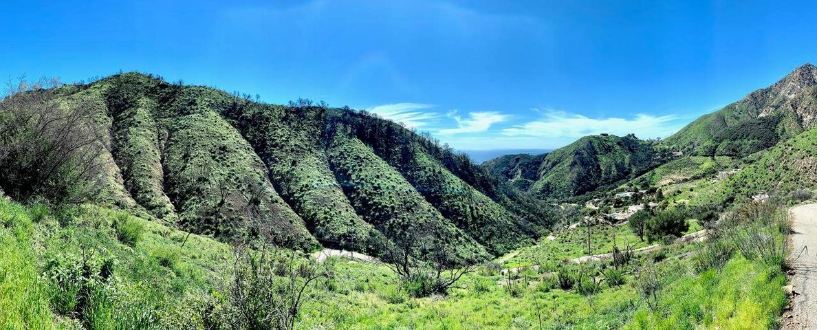 Hill Top and Toro Canyon