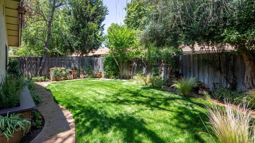 Grassy Lawn and Plantings