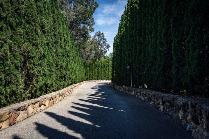 904 Camino Viejo Driveway