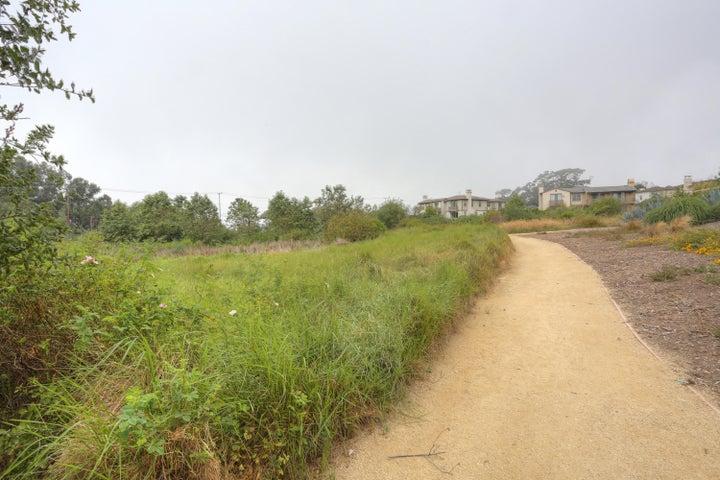 Preserve Area