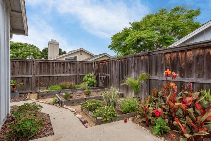 21-Back Yard-Garden