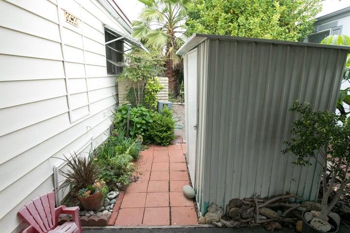 Side yard-Shed