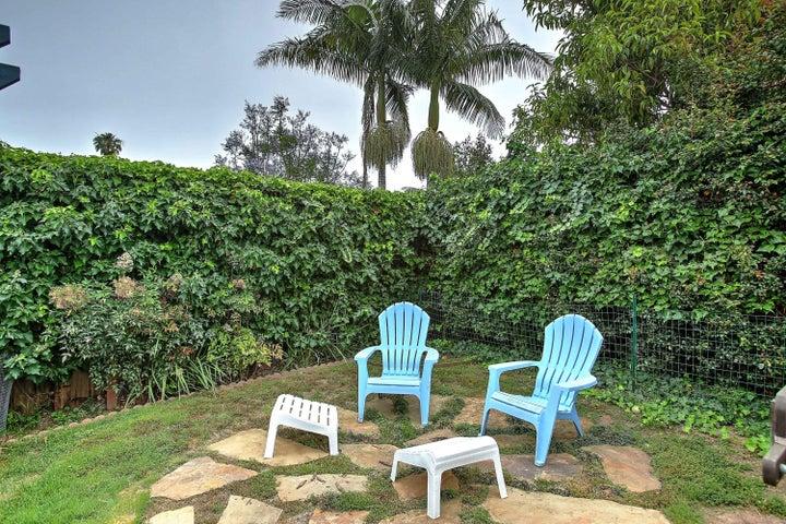 Backyard mature shrubs