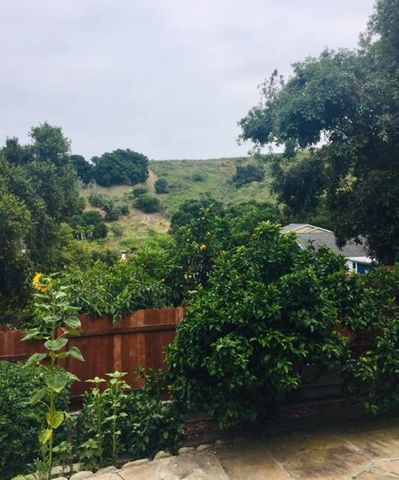 Canyon View from Back Patio