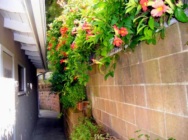 10 - Retaining Wall Flowers