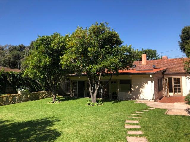 Backyard w/Fruit Trees