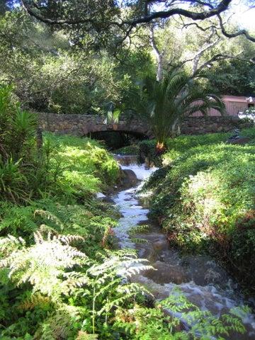 Seasonal Creek and Walking Bridge