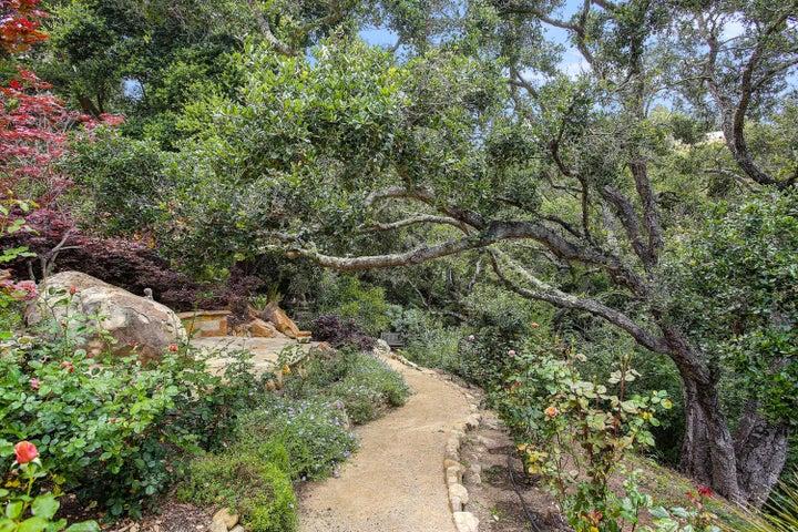 Wandering trails
