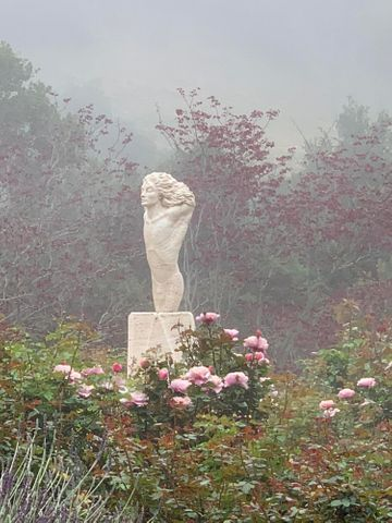 Angel in the Mist