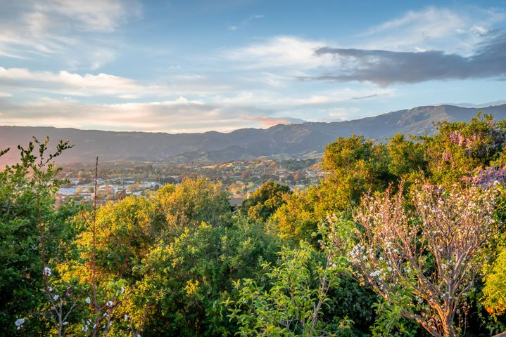 Via Vistosa View