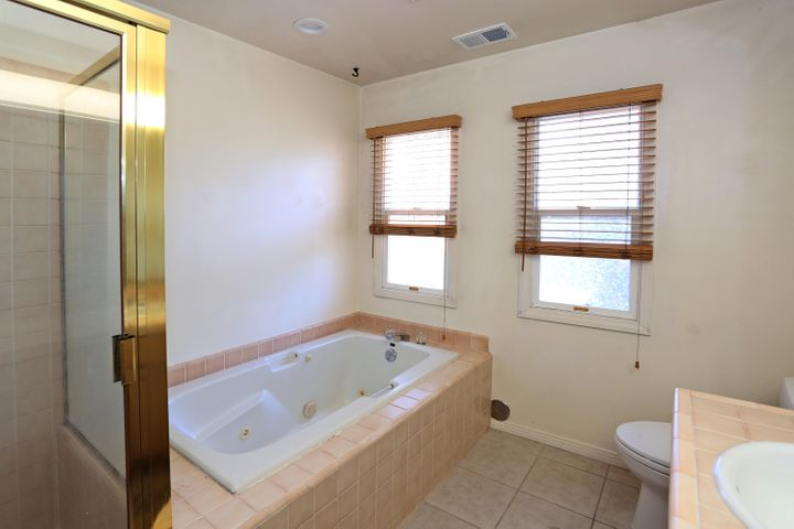 Spa tub and shower