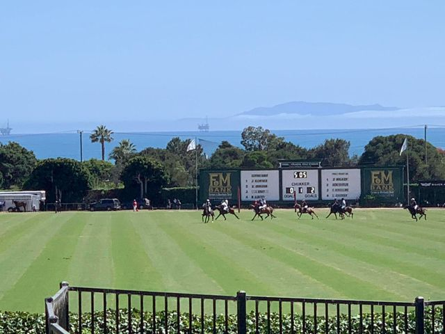 Watch polo live with ocean views!