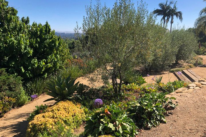 20_Meandering gardens 3