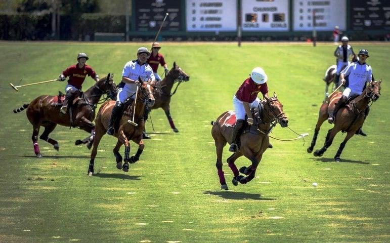 Polo Field photo 1