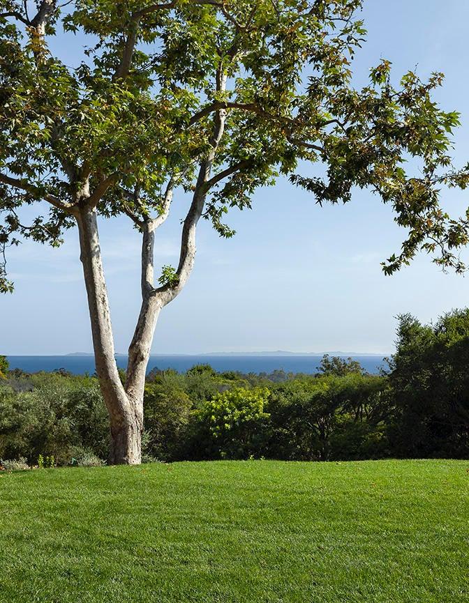 Ocean View Lawn