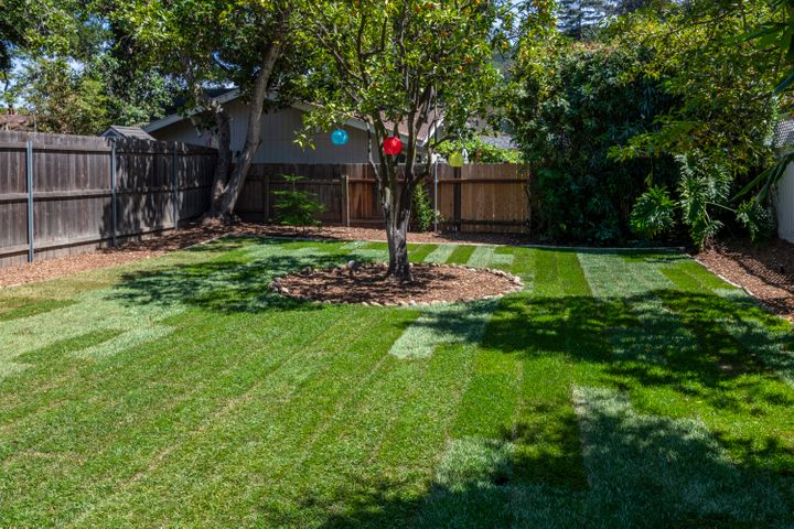 913 W Victoria Grass & Orange Tree Lante