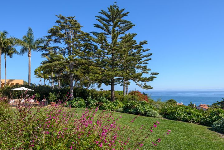 Ocean Views from Back Lawn
