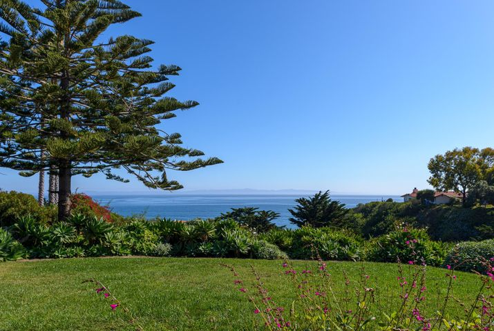 Ocean views framed by lush landscaping