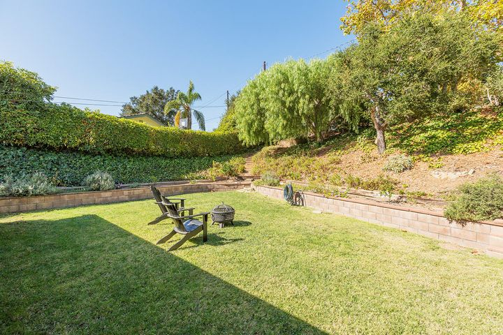 Backyard w/hillside and fruit