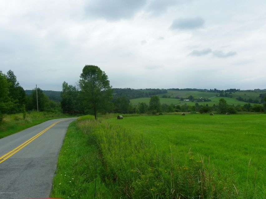 Nice lot for building site, beautiful views in the elk Lake School district. 2 road frontages: Chase Rd and 3004