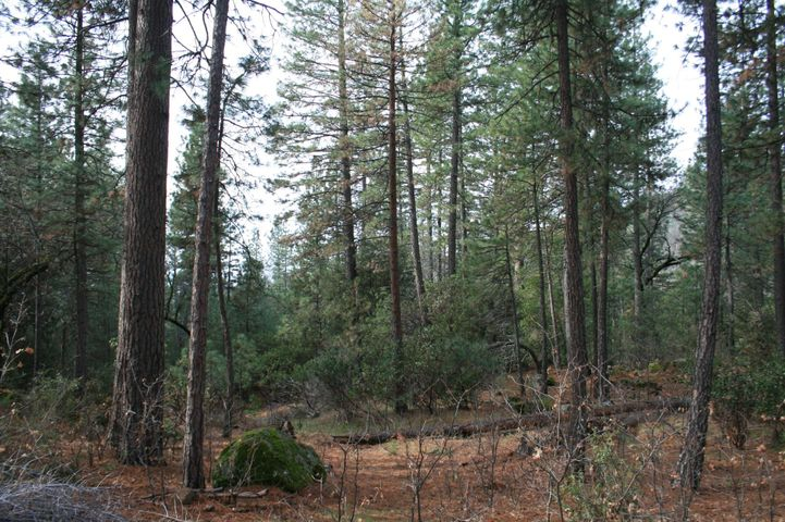 #04,4.79 ac Christy Creek Lane, Shingletown, CA 96088