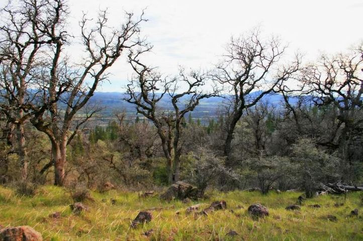 #001 5.70 ac Christy Creek Ln, Shingletown, CA 96088