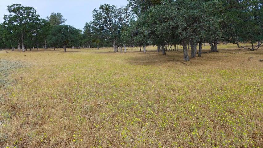 40.2 Acres Campo Dios Rd, Shingletown, CA 96088