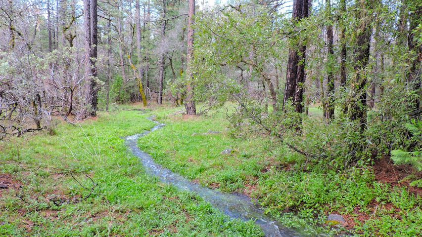 5.2 acres Smith Logging Road, Oak Run, CA 96069