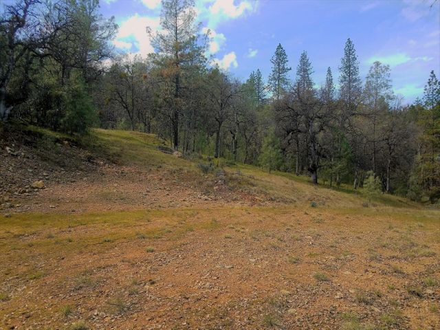 9977 Rainbow Lake Rd, Igo, CA 96047