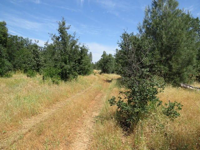 HAPPY VALLEY ROAD, COTTONWOOD, CA 96022