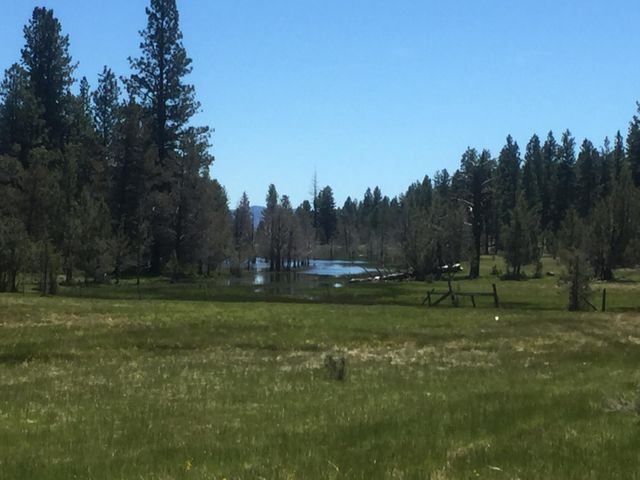 County Rd 94, Lookout, CA 96054