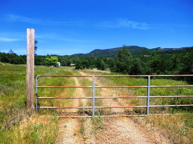 18309 Patterson Ranch Rd, Montgomery Creek, CA 96065