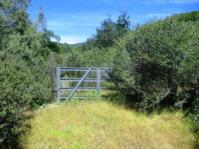 10 acres Patterson Ranch Rd, Round Mountain, CA 96084