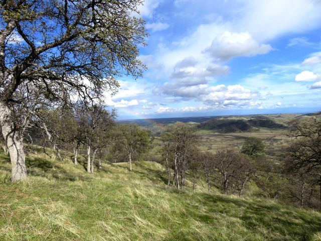 40 acres Trinity Alps Vista Road, Ono, CA 96047