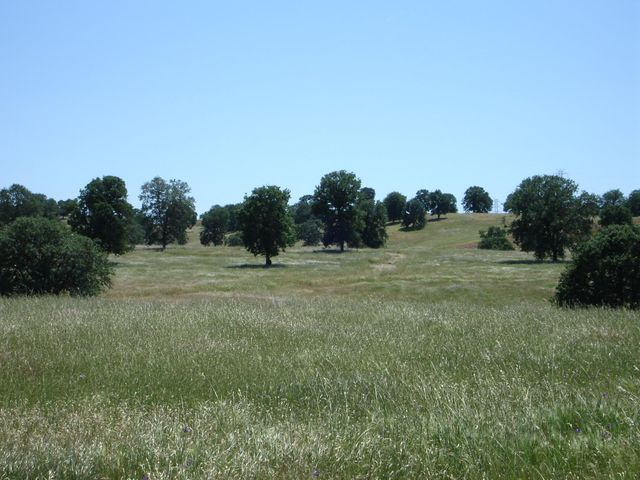 Lot #70 River Downs Way, Cottonwood, CA 96022