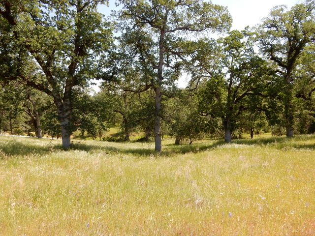 Valley Creek Lane, Redding, CA 96003