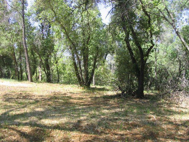 Swede Creek, Oak Run, ca 96003