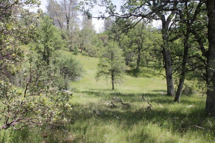 154 Acres Donkey Mine Road, Oak Run, CA 96069