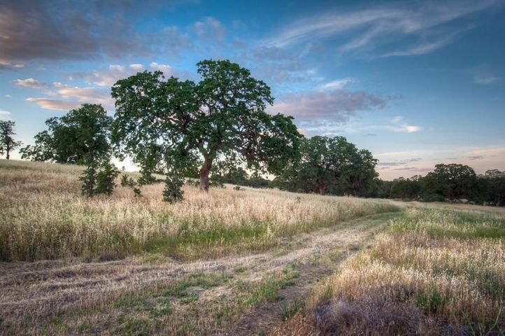 Lot 3 Happy Valley Trail, Cottonwood, CA 96022