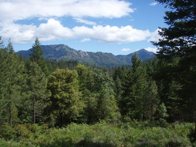 6.37 acres Gilman Road, Lakehead, CA 96051