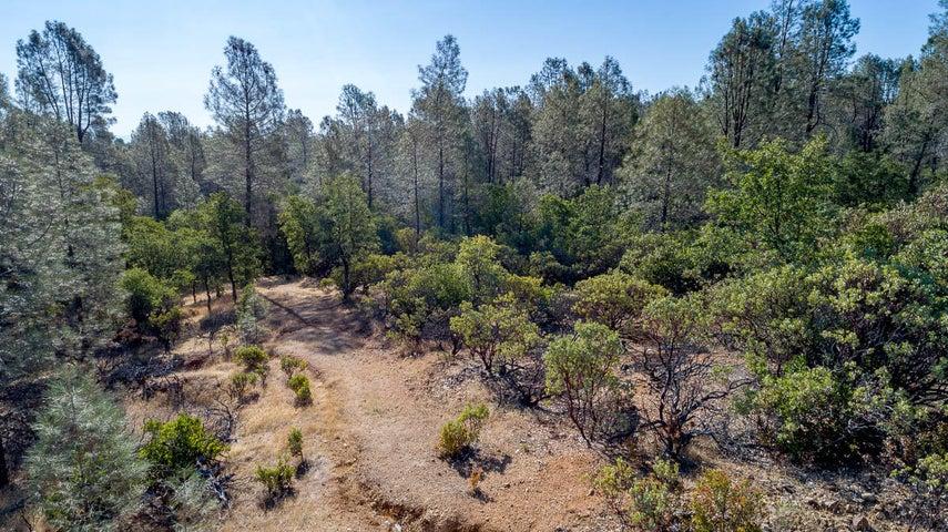 Cactus, Redding, CA 96003